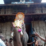 The Madathil Varavu, or temple entry of the elephants at the Thrissur Pooram