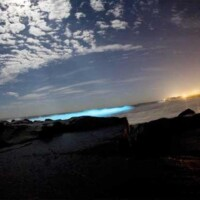 Mosquito Bay, Puerto Rico | Fire in the water